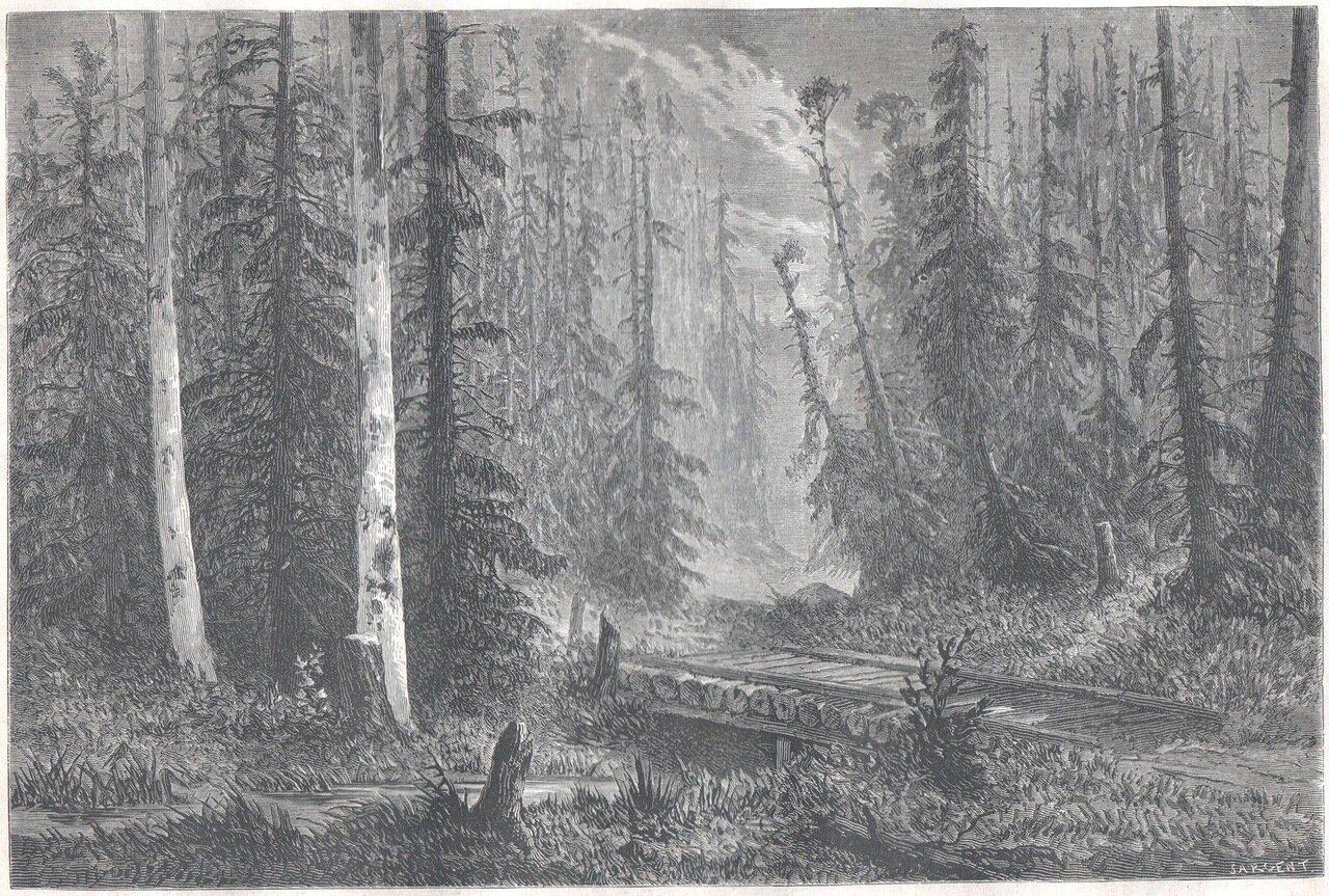 1867. Русский лес