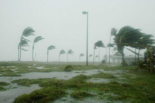 Число жертв урагана «Мэттью» в Гаити достигло 340 человек