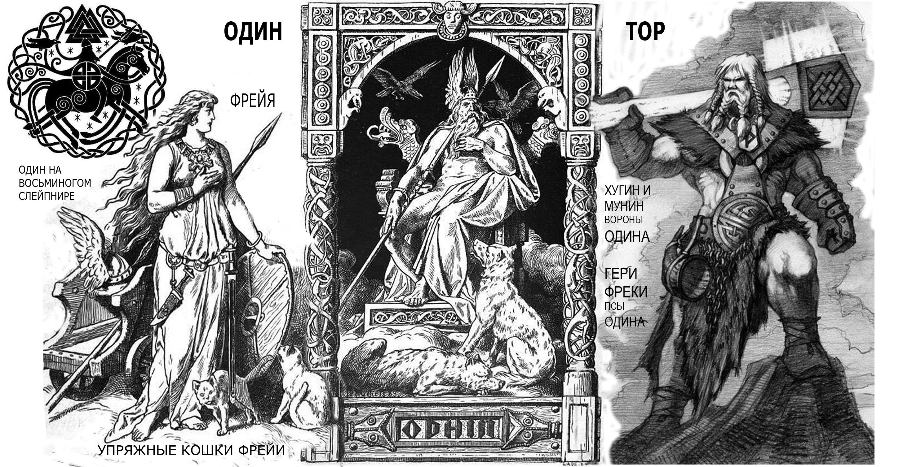 боги норманнов.jpg