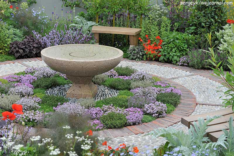 A modern Apothecary Garden (11).jpg