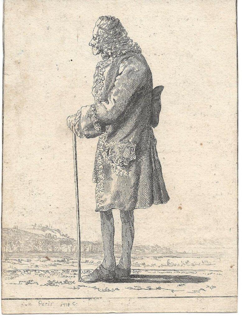 Voltaire_1778_nach_links.jpg