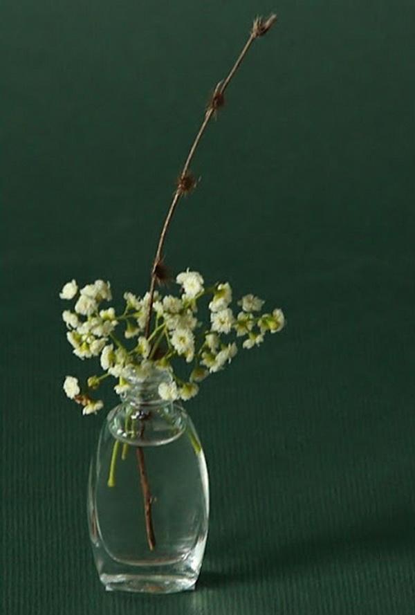 цветочнык композиции