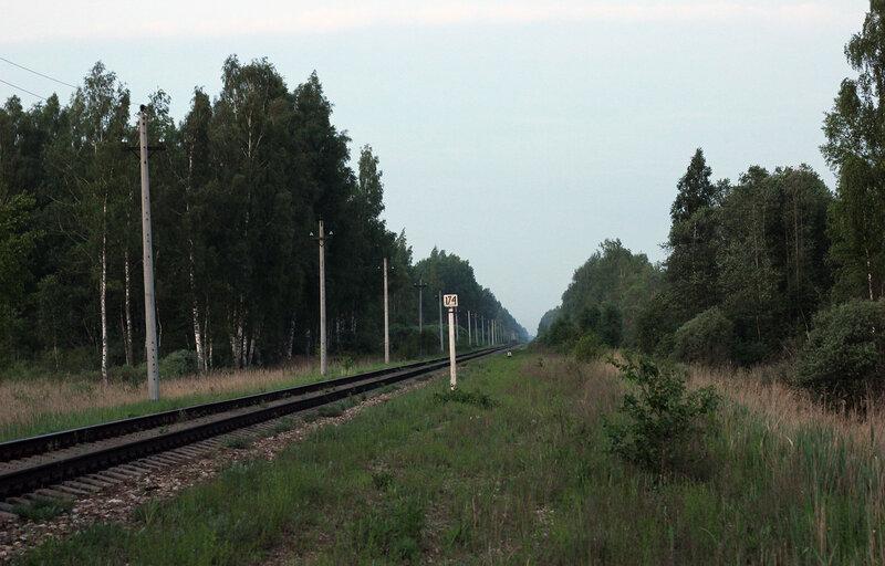 Бывшая вяземская горловина закрытой станции Помельница, перегон Осуга - Сычёвка. Вид на Вязьму