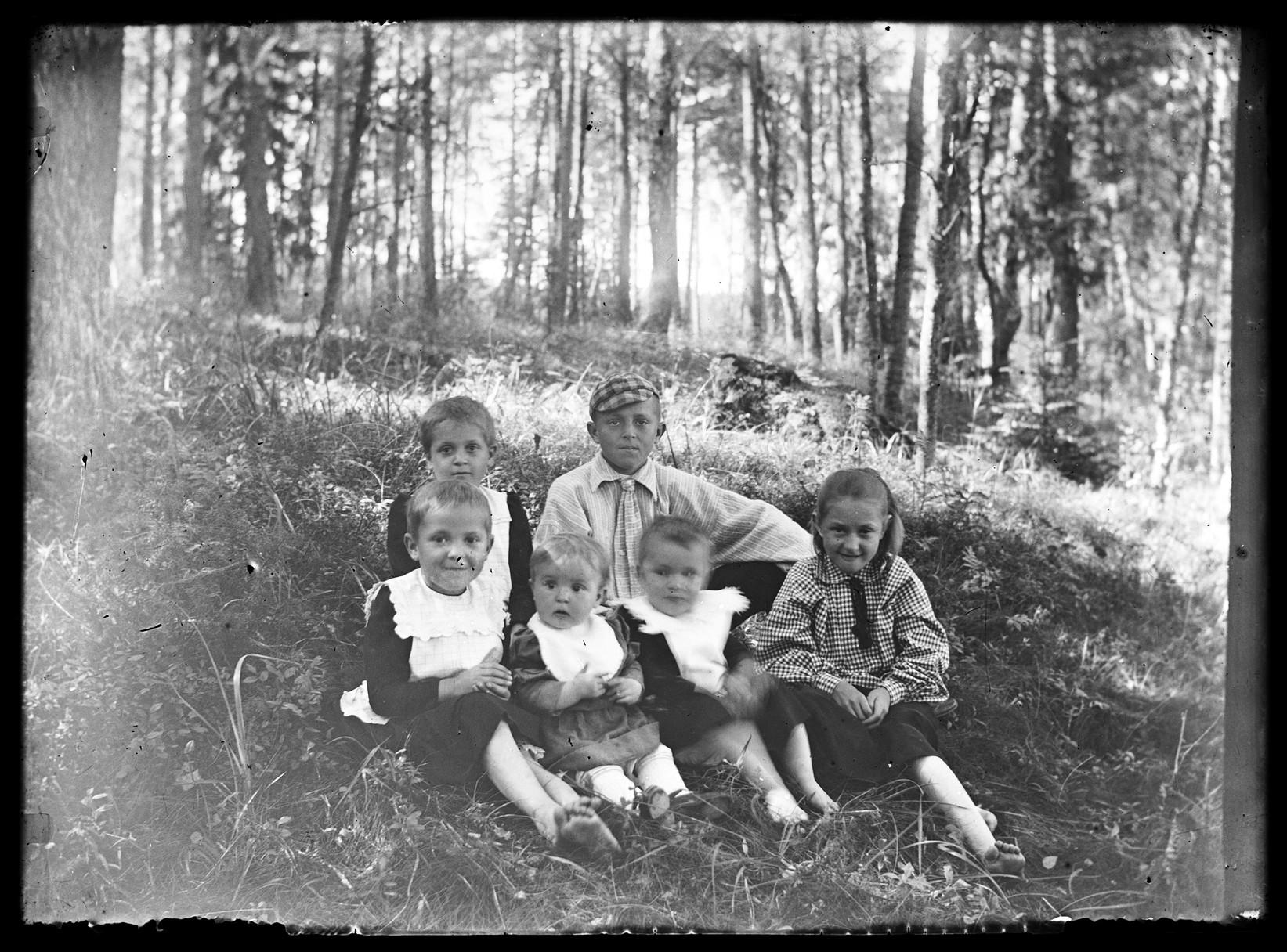 Дети (от первого брака), передний ряд Майго; Инга; Лайне; Эрна; Задний ряд слева Лилли; Эйнар