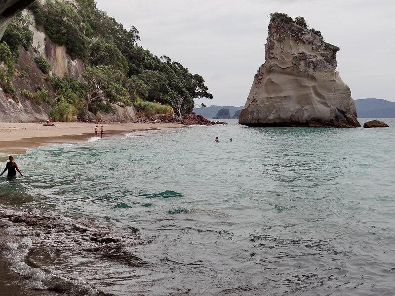 У скалистых берегов Новой Зеландии