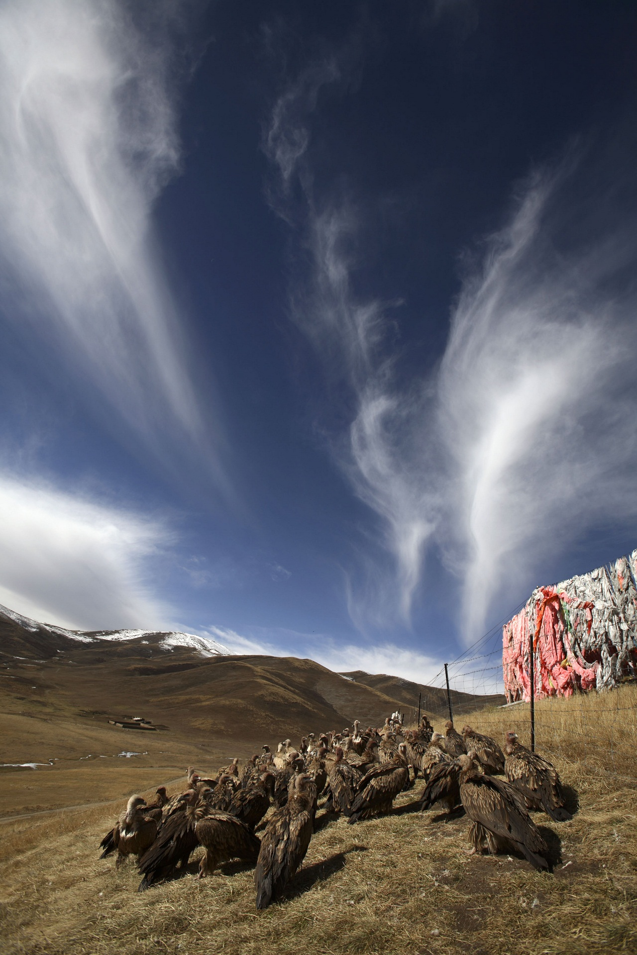 Небесное погребение в Тибете (Впечатлительным НЕ СМОТРЕТЬ!)