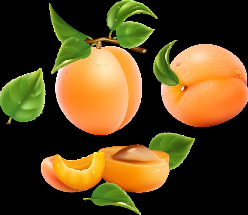 овощи-фрукты (3).png