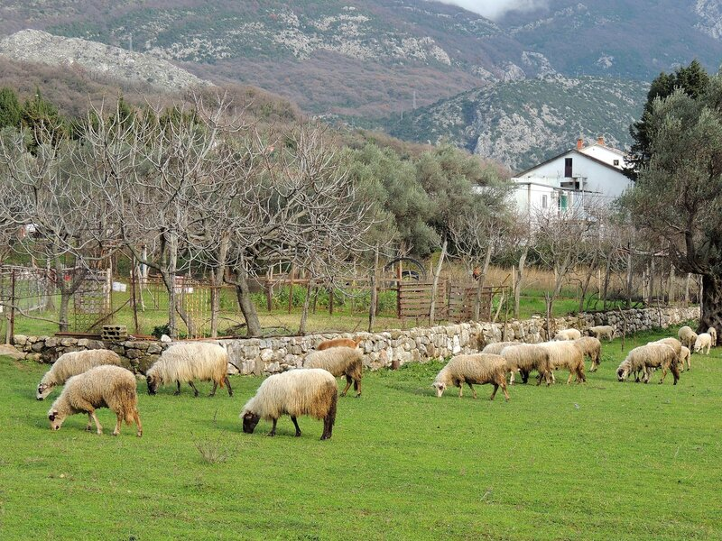 последний день зимы в Черногории