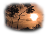 anna.br_paysage_30-05-10.png