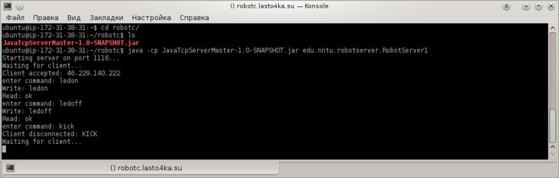 konsole_ssh6_robotserver_kick.png