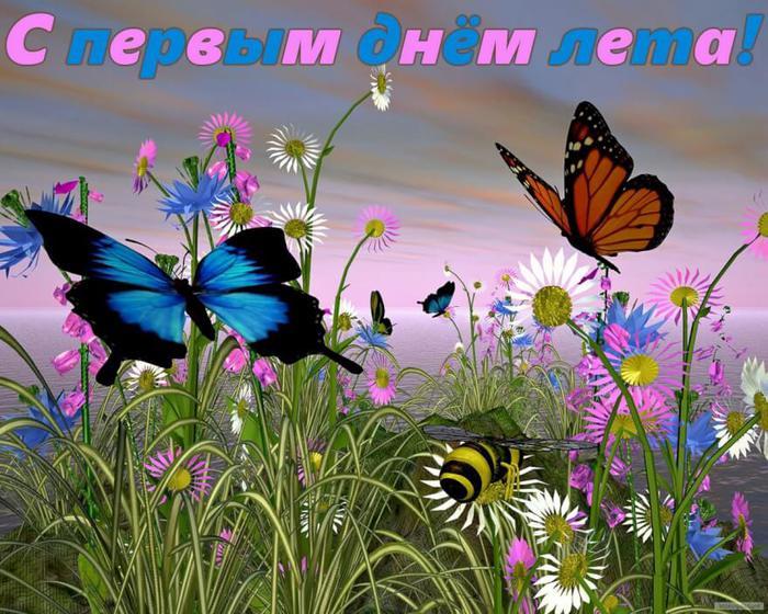 С первым днем лета! Бабочки над полем открытки фото рисунки картинки поздравления