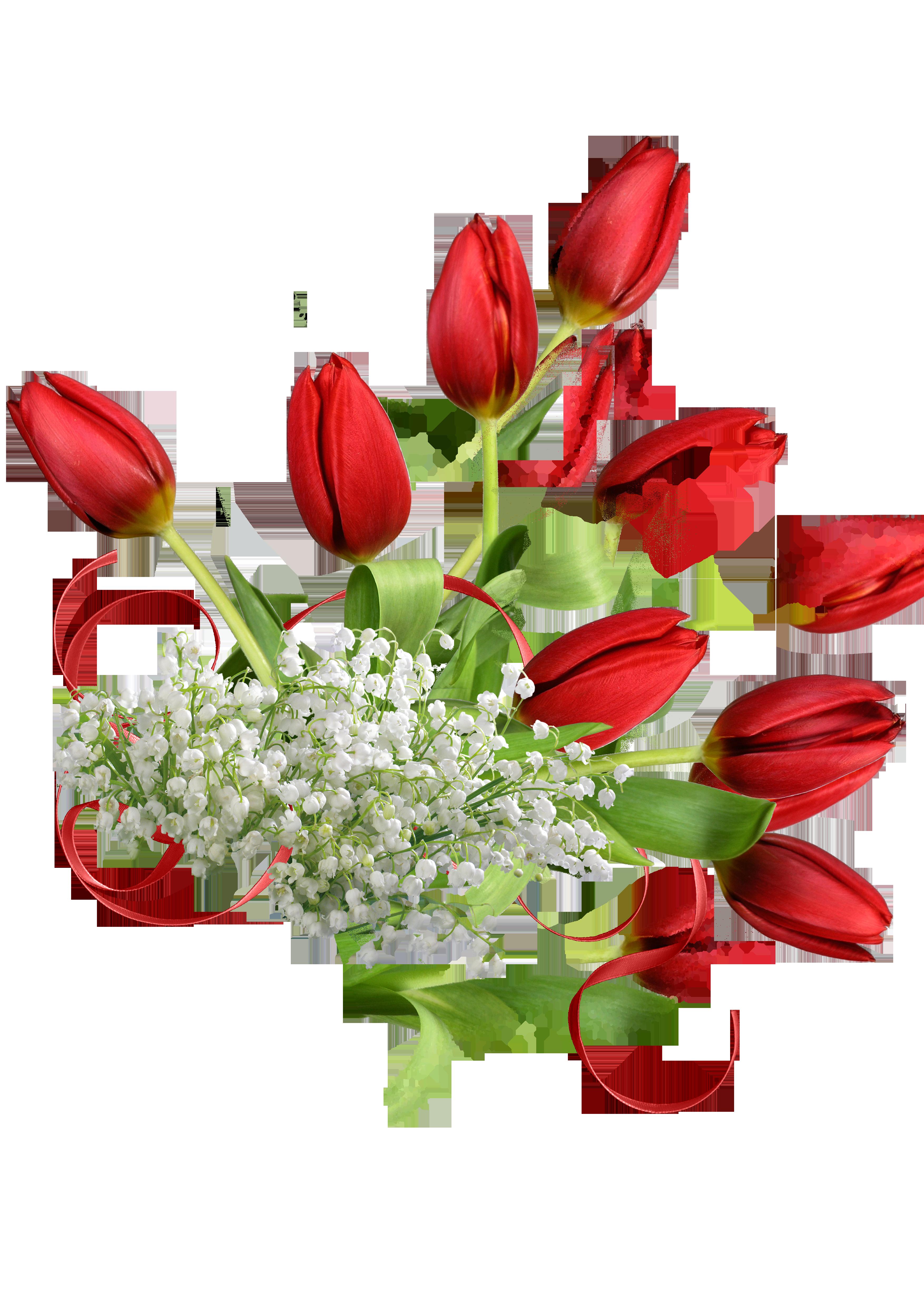картинки цветов на 8 марта красивые на прозрачном фоне полагают