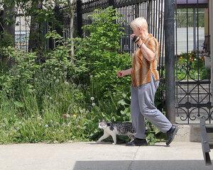 на прогулке с котом