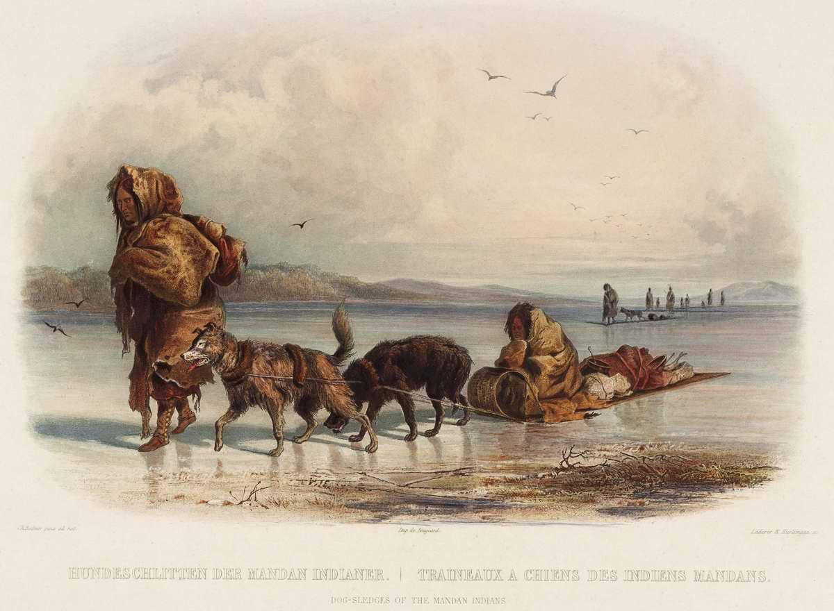 Собачьи повозки индейцев племени манданов - Karl Bodmer