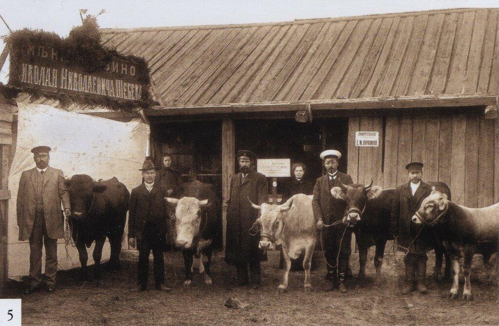 395991 Молога. Группа крестьян имения Мурзино в подотделе животноводства на сельскохозяйственной выставке 1912.jpg