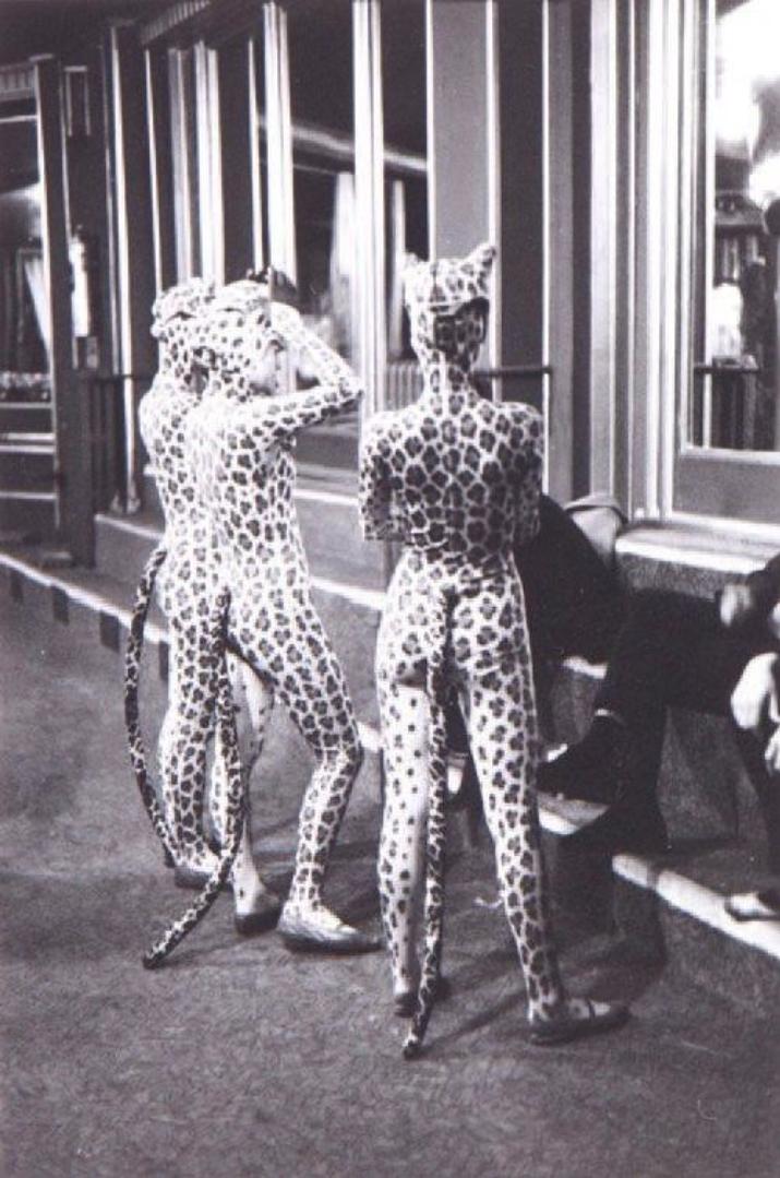1952. Девушки леопарда, Париж