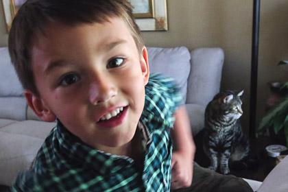 Кошку, спасшую хозяйского сына, пригласили на бейсбол