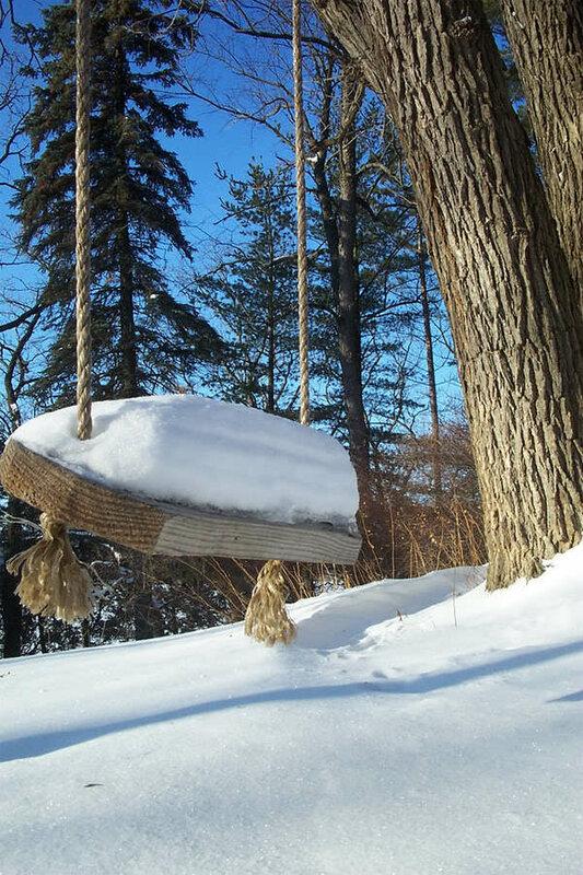 Необычный дом вокруг дерева