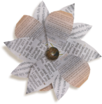 kimla_beloved_flower4_sh.png