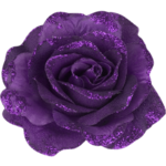 Flower Hallow (16).png