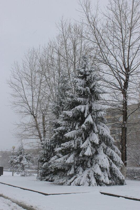 Апрельский снег.