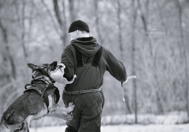 http://img-fotki.yandex.ru/get/9807/22682307.fc/0_b68ba_2ea7e074_XL.jpg