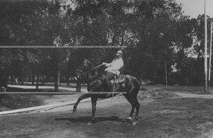 Кирасир - офицер показывает высшую школу верховой езды.