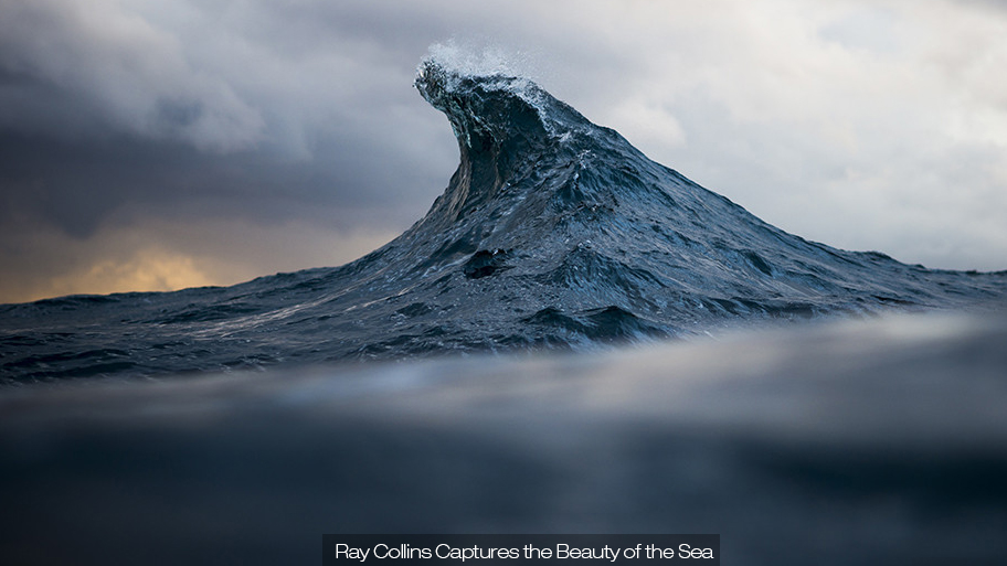 Ray Collins Captures the Beauty of the Sea (14 pics)