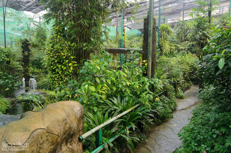 Парк бабочек в Куала Лумпур