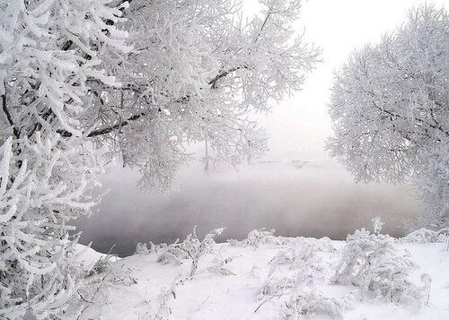 Я так люблю, когда приходит снег...