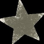 larasdigiworld_chilliwinter-addon-star2.png