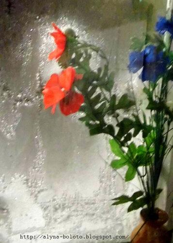 Цветы в окне