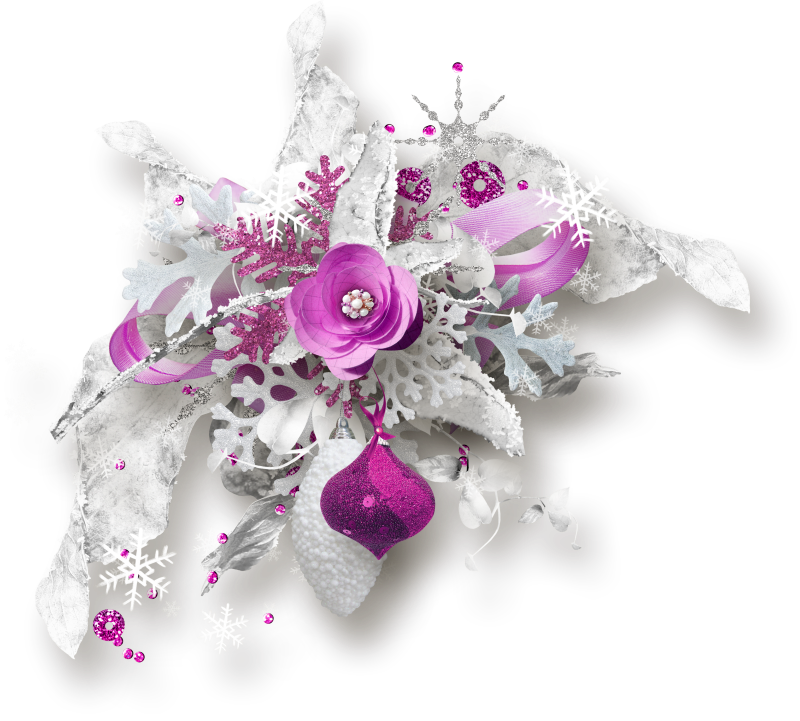 DBB_jollyseason_cluster01.png