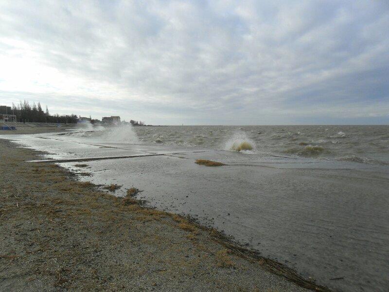 Фото, Азовское побережье, январь 2014