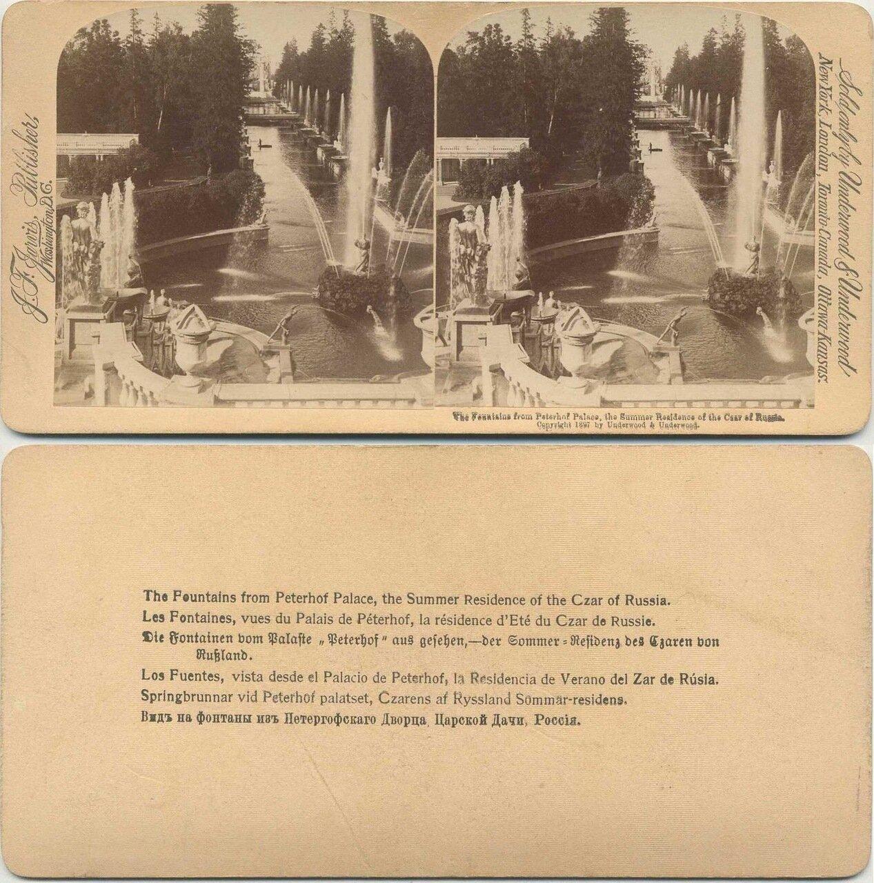 Вид на фонтаны из Петергофского дворца