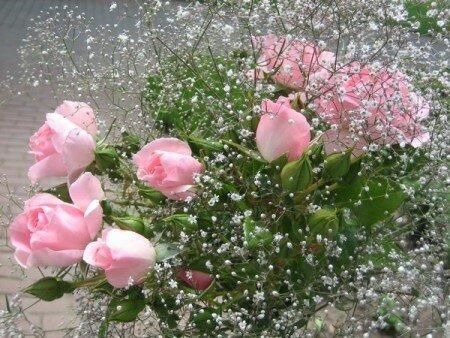 Букет рзовых роз открытка поздравление картинка