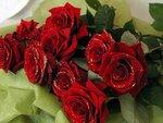 Блестящие красные розы открытки фото рисунки картинки поздравления