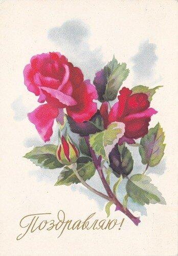 Открытка. Поздравляю Изображение роз открытка поздравление картинка