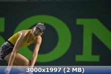 http://img-fotki.yandex.ru/get/9809/247322501.39/0_16beff_5b9d1490_orig.jpg