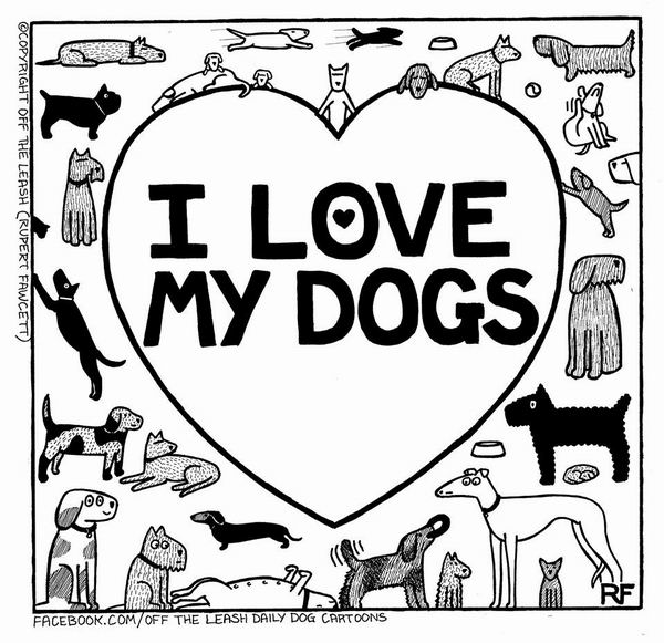 Тайная жизнь собак / The Secret Life of Dogs. Проект и книга Руперта Фосетта / Rupert Fawcett