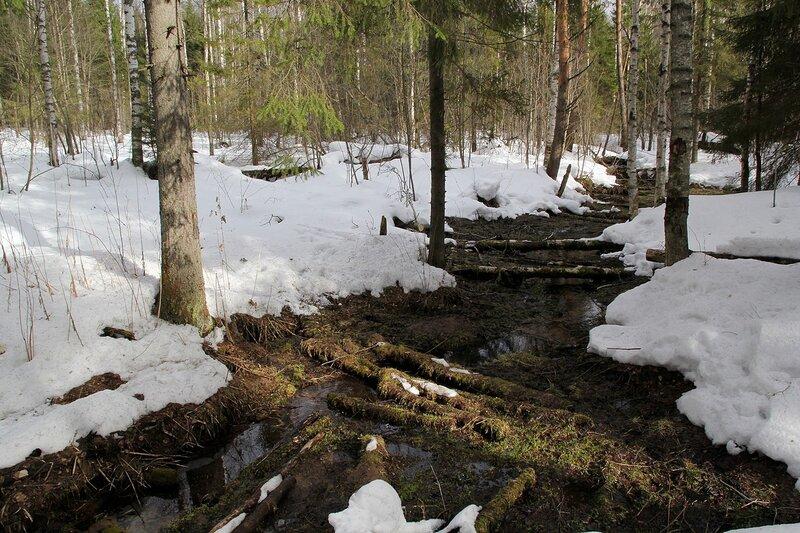 Солнечные лучи поперёк русла речного ручья, протаявшего дорогу в снегу в Порошино весной в марте