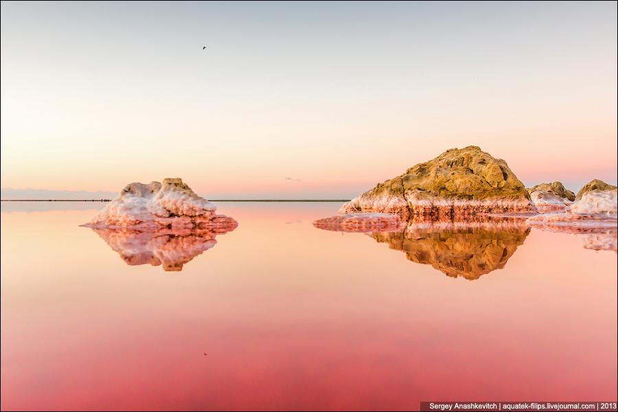 Розовое безумие Кояшского соленого озера
