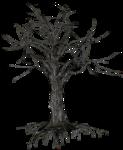 WP_GP_TREE2.png
