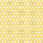 PixelGypsyOurLife_zpp (1).jpg