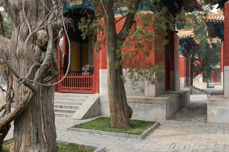 Кипарисы и Павильоны Каменных Табличек, Пекин, Храм Конфуция