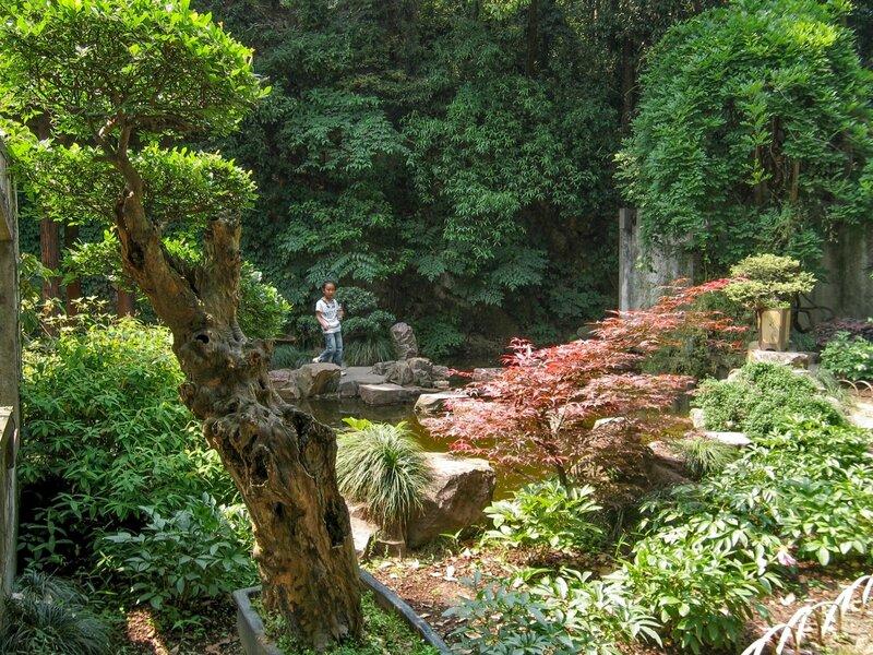 Деревья в саду, Люхэта, Ханчжоу