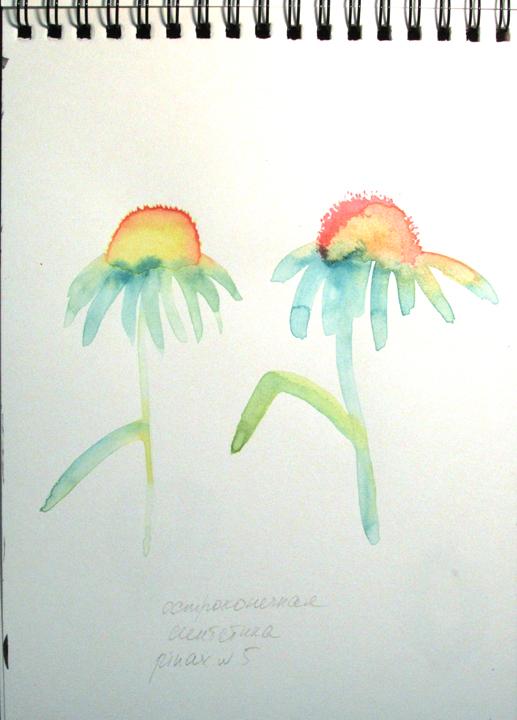 _04_цветы.jpg
