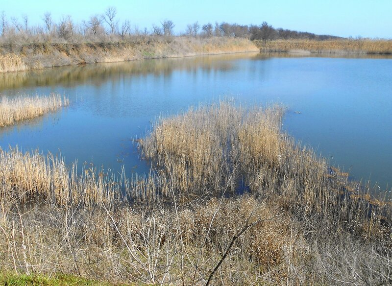 Гладь мартовского озера ... DSCN1424.JPG