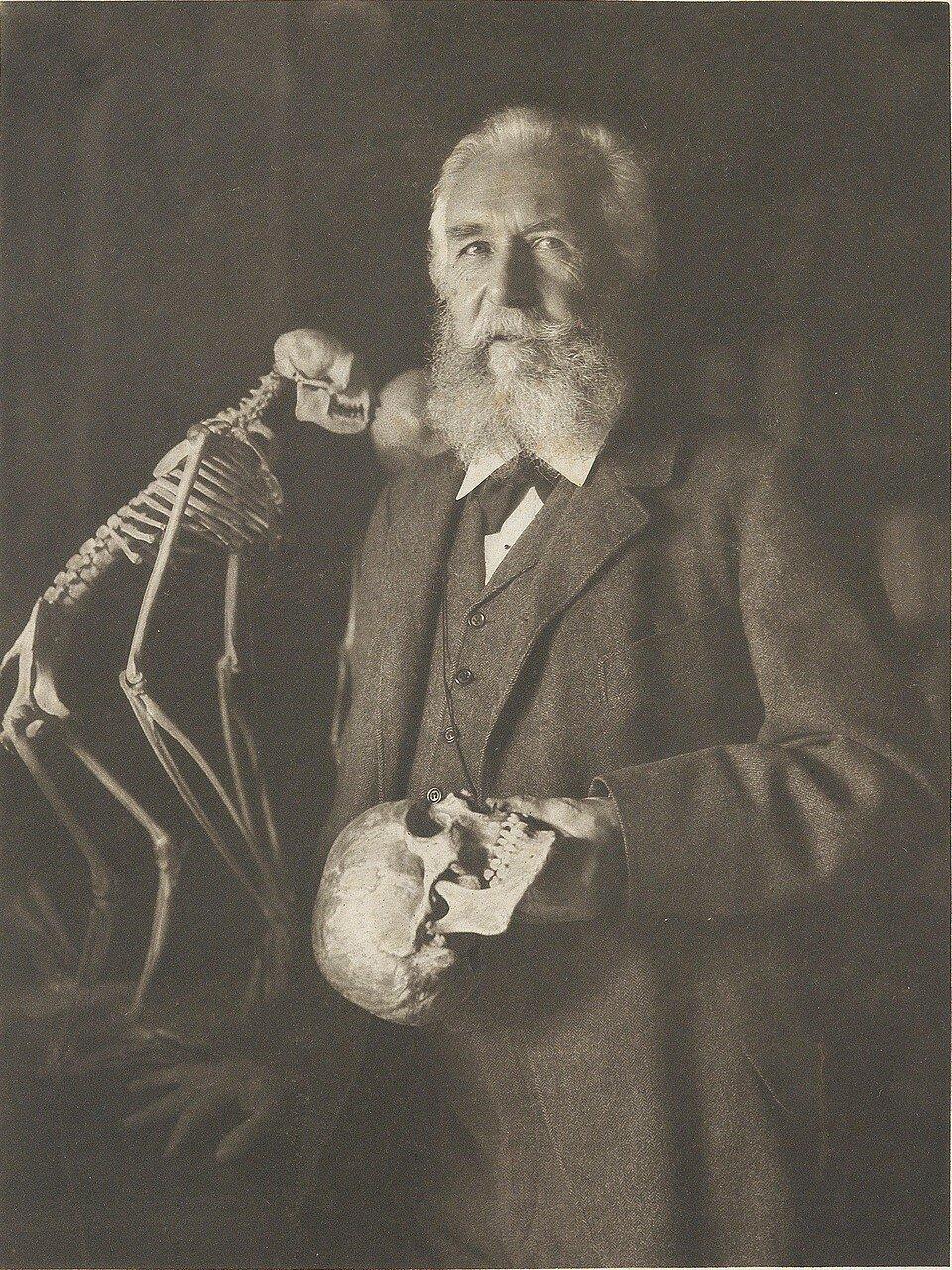 1904. Эрнст Генрих Геккель (естествоиспытатель и философ)