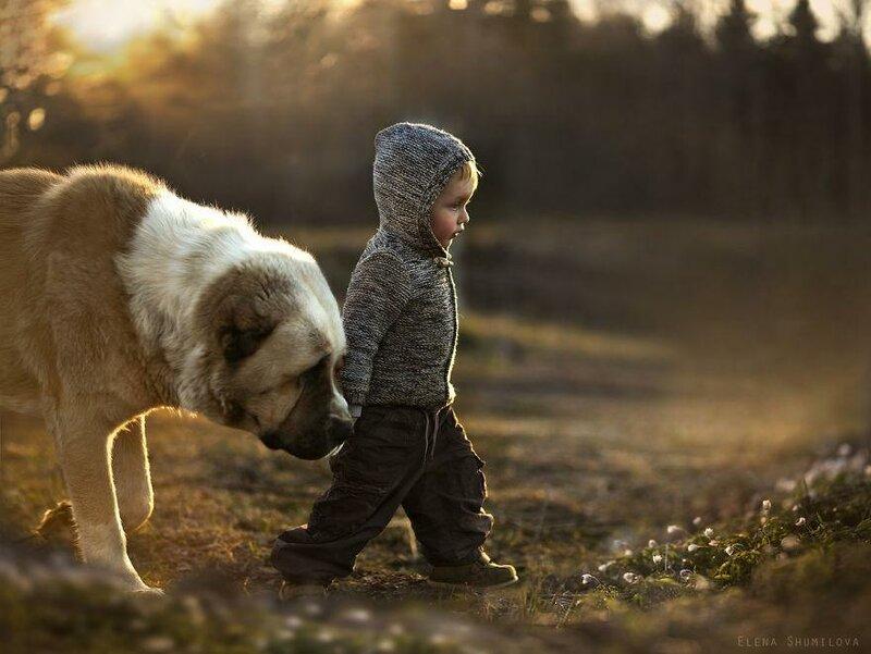 Фотограф Елена Шумилова — мама двух дружных шустрых мальчишек. Сыновья и их домашние животные стали героями серии душевных фотографий о жизни в деревне.  «Мне хотелось бы запечатлеть детство как оно есть — настоящим, с конфузами, удивлениями, мечтам